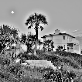 Moon rise over Beach House by Gary Latone - Buildings & Architecture Homes