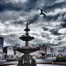 Fountain by Darren Harrison - Buildings & Architecture Statues & Monuments ( sky, seagull, fountain, seaside, weston-super-mare )