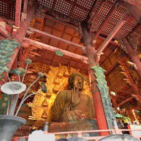 Nara Buddha by Mark Lendacky - Buildings & Architecture Statues & Monuments ( statue, japan, indoor, nara, religious, buddha,  )