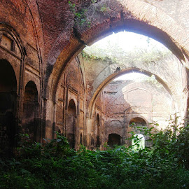 by Ajanta Ghosh - Buildings & Architecture Architectural Detail (  )