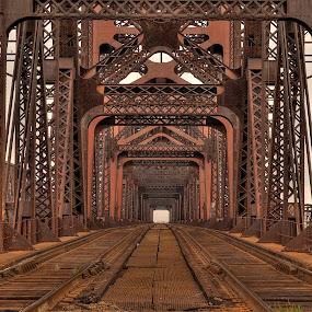 Tracks by Ajit Pillai - Buildings & Architecture Bridges & Suspended Structures ( railroad, bridge, tracks, iron, river,  )