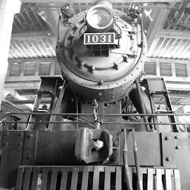 by Lee Sherrill - Transportation Trains