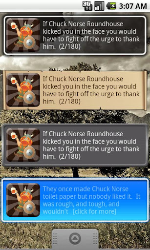 Chuck Norse Facts with Widget