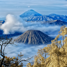 Bromo Mountain View by Roy Ardy - Landscapes Mountains & Hills ( landscape, mountains & hills,  )