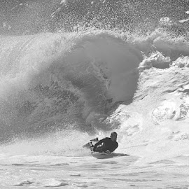 Big Wave by Jose Matutina - Sports & Fitness Surfing ( surfing, wave,  )