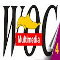 Corso Media Composer 5 - Lez.4 icon