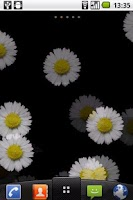 Screenshot of White Flower Live wallpaper