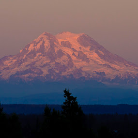 Mt. Rainier Sunset by Peter Andrusyszyn - Landscapes Mountains & Hills ( photo by pete andrusyszyn, olympia washington, sunset, mt. rainier )
