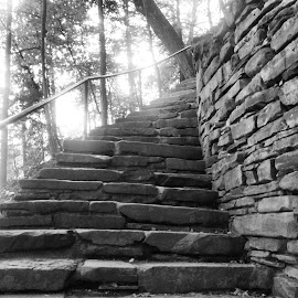 Stairway To A Better Place by Chris Valentino Jr. - Buildings & Architecture Architectural Detail ( stairway to, stairway, black and white, b & w, sunlight, stones, stone stairs )