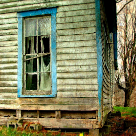Grandma's Daffodyls by Julie Dant - Buildings & Architecture Decaying & Abandoned ( decaying houses, daffodyls, old windows, old houses, abandoned houses )