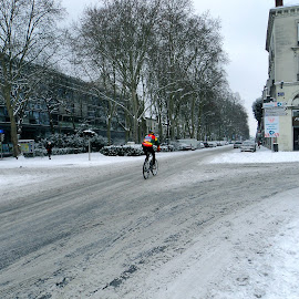 Snowy day in Tours by Serge Ostrogradsky - Transportation Bicycles ( snow, sport, tours, bicycle )