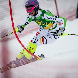 Maria Hoefl Riesch  by Urban Meglič - Sports & Fitness Snow Sports ( ski, skiing, golden fox, winter, fox, slalom, 2014, sport, golden )