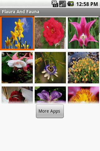 Flowers Wallpapers Trial