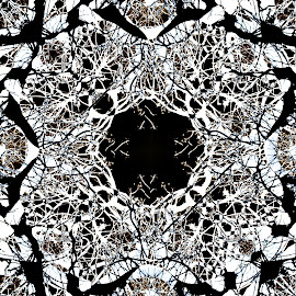 Mandala by Alexander Dedelyanov - Abstract Patterns ( abstract, yolo, blackandwhite, b&w, pattern, white, bw, lsd, trip, black, photoshop, and )
