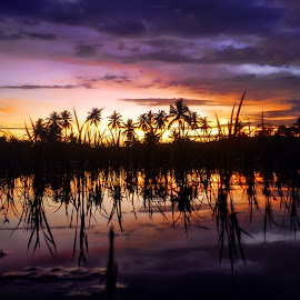 Reflection in another day by Randi Pratama M - Instagram & Mobile Android ( mobilography, reflection, indonesia, sunset, hour, golden )