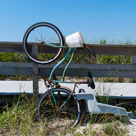 Transportation for Fire Island by Bonnie Forman-Franco - Transportation Bicycles ( bicylce, baby seat )