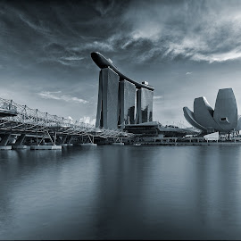 Monochromatic by Patrick Pak - City,  Street & Park  Skylines ( #mono tone #, #singapore, #garden by the bay )