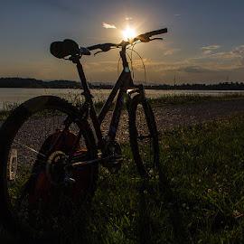 Sun gazing by Vesna Holjevac - Transportation Bicycles ( sunset, twilight, sport, transportation, bicycle )