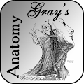 Free Download Gray's Anatomy 2012 Lite APK for Samsung