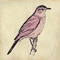Nightingale Bird Sound Effects icon