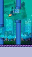 Screenshot of Flappy Doge