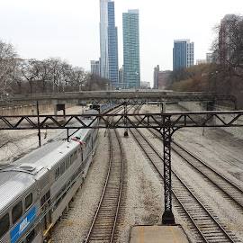 Trains to the city by Gregg Moreland - Landscapes Travel ( skyline, metra, train, tracks, chicago, city )