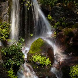 by Ravindra Tanwar - Landscapes Waterscapes ( water, waterfall, landscape )