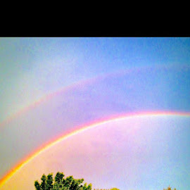 double rainbows by Melissa Devine - Landscapes Weather ( sky, blue, rainbows, trees, double )