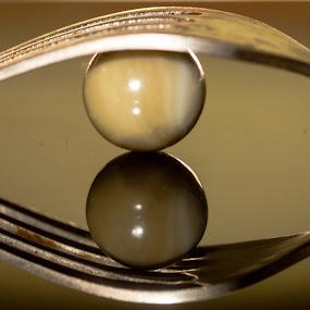 Gobble by Madhujith Venkatakrishna - Artistic Objects Cups, Plates & Utensils (  )