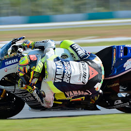 The Doctor by Hazman Hj Rahim - Sports & Fitness Motorsports ( motogp, racing, the doctor, sports, velentino rossi, malaysia, sepang circuit, no46 )