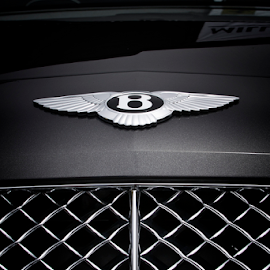 Bentley Ornament by Joseph Humphries - Transportation Automobiles ( car, hoodornament, grill, automobile, ornament, expensive, hood, bentley )