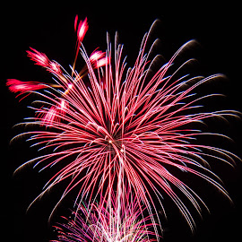 Light by Marcus Roes - News & Events Entertainment ( color, art, fireworks, long exposure, light )