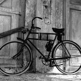 by Dirly Miradz - Transportation Bicycles