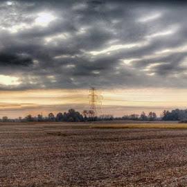 by Lloyd Litten - Landscapes Prairies, Meadows & Fields (  )