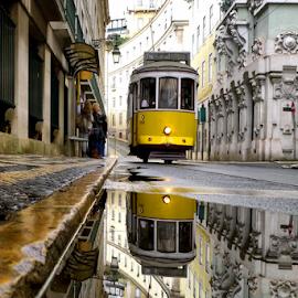 Mirror by Fernando Filipe - City,  Street & Park  Street Scenes