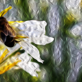 pure nectar by Breno Teixeira - Digital Art Things ( petals, bee, nectar, flower, honey )
