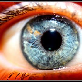 mechanics by David Walker - Abstract Macro ( eye saffi9 )
