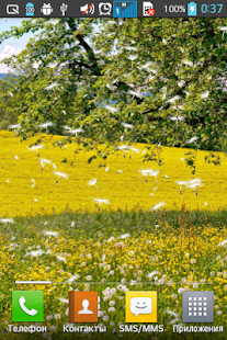 Dandelion Field Live Wallpaper - screenshot