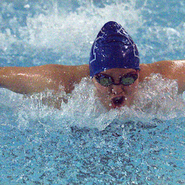 Butterfly by Jude Huang - Sports & Fitness Swimming ( mount st dominic, seton hall prep,  )