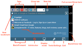 Screenshot of MiniBrowser PRO