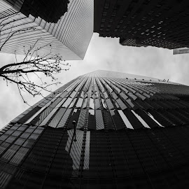 New York  by Riley Seebeck - Buildings & Architecture Office Buildings & Hotels ( clouds, skyline, black and white, glass, buildings, windows, manhattan, architecture, new york city, city,  )