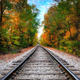 railway fall by Brian Hollars - Transportation Railway Tracks ( autumn, color, foliage, railroad, fall, leaves )