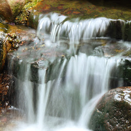 Little waterfall by Nikki Chisolm - Nature Up Close Rock & Stone