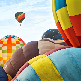 Balloon Race by Lou Plummer - Sports & Fitness Other Sports ( hot air balloon, sports, balloon fest, race, north carolina )