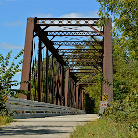 Old Bridge Stands Tall by Amy McGuire - Novices Only Landscapes ( wisconsin, cheese county trail, autumn, bridge, september )