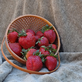 fresh from the feilds. by Carolyn Kernan - Food & Drink Fruits & Vegetables (  )