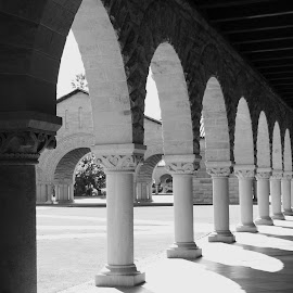 Rustic and intricately detailed arches at Stanford U by Nickoleta Antonopoulos Nguyen - Buildings & Architecture Architectural Detail ( stanford university, california, arches, buildings, architecture, stanford, mission style,  )