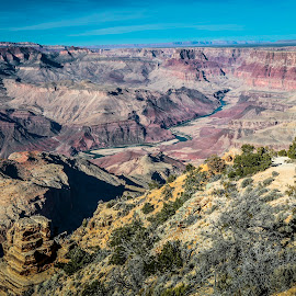 Grand Canyon by Christa Ehrstein - Landscapes Travel ( southern rim, grand canyon )