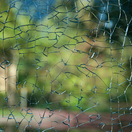 city green by Mignon Rens - Abstract Patterns ( abstract, broken, zoo, glass, antwerp )