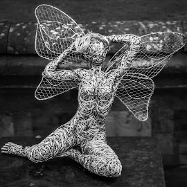 Fairy pose by Nicole Williams - Novices Only Objects & Still Life ( fairy wire sculpture pose )